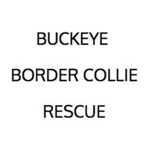Buckeye Border Collie Rescue Logo