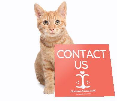 Contact Us Pets