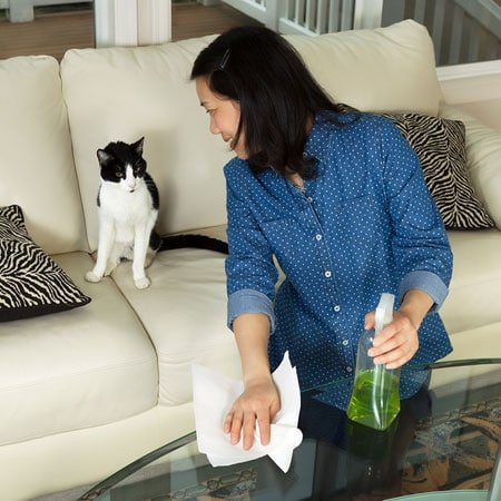 Tips to Prevent Accidental Pet Poisoning