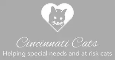 cincinnati-cats-logo
